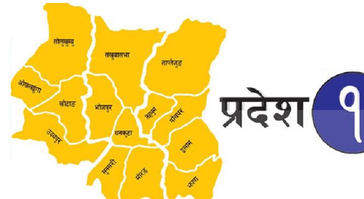 घरेलु उद्यमीको समस्या समाधान गर्न प्रदेश सरकार प्रतिबद्ध