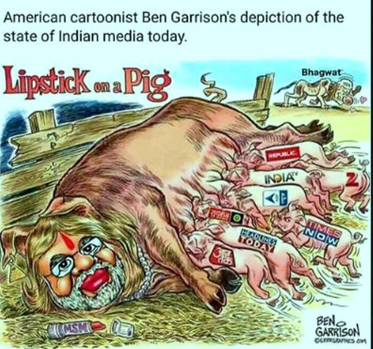 भारतीय 'गोदी' मिडियालाई अमेरिकन कार्टुनिस्टको झापड  !