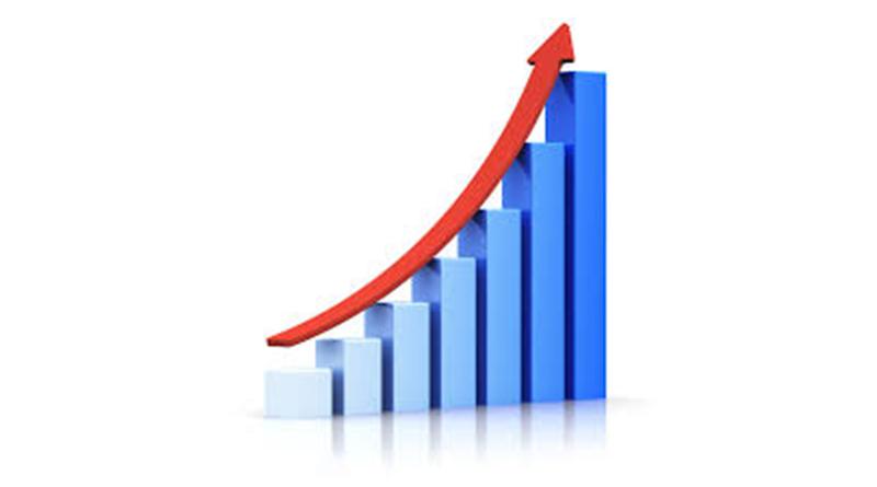 नेप्सेमा दोहोरो अङ्कको वृद्धि, साढे सात अर्बको कारोवार