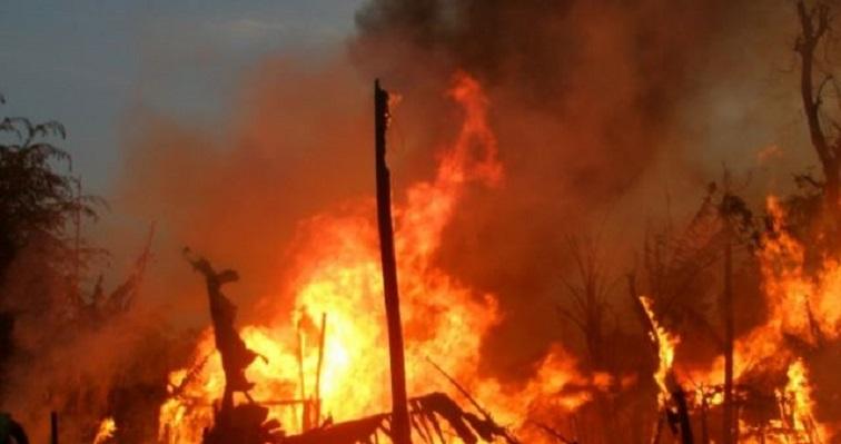 सिद्धिविनायक सामुदायिक वनमा आगलागी हुँदा वनक्षेत्रमा क्षति