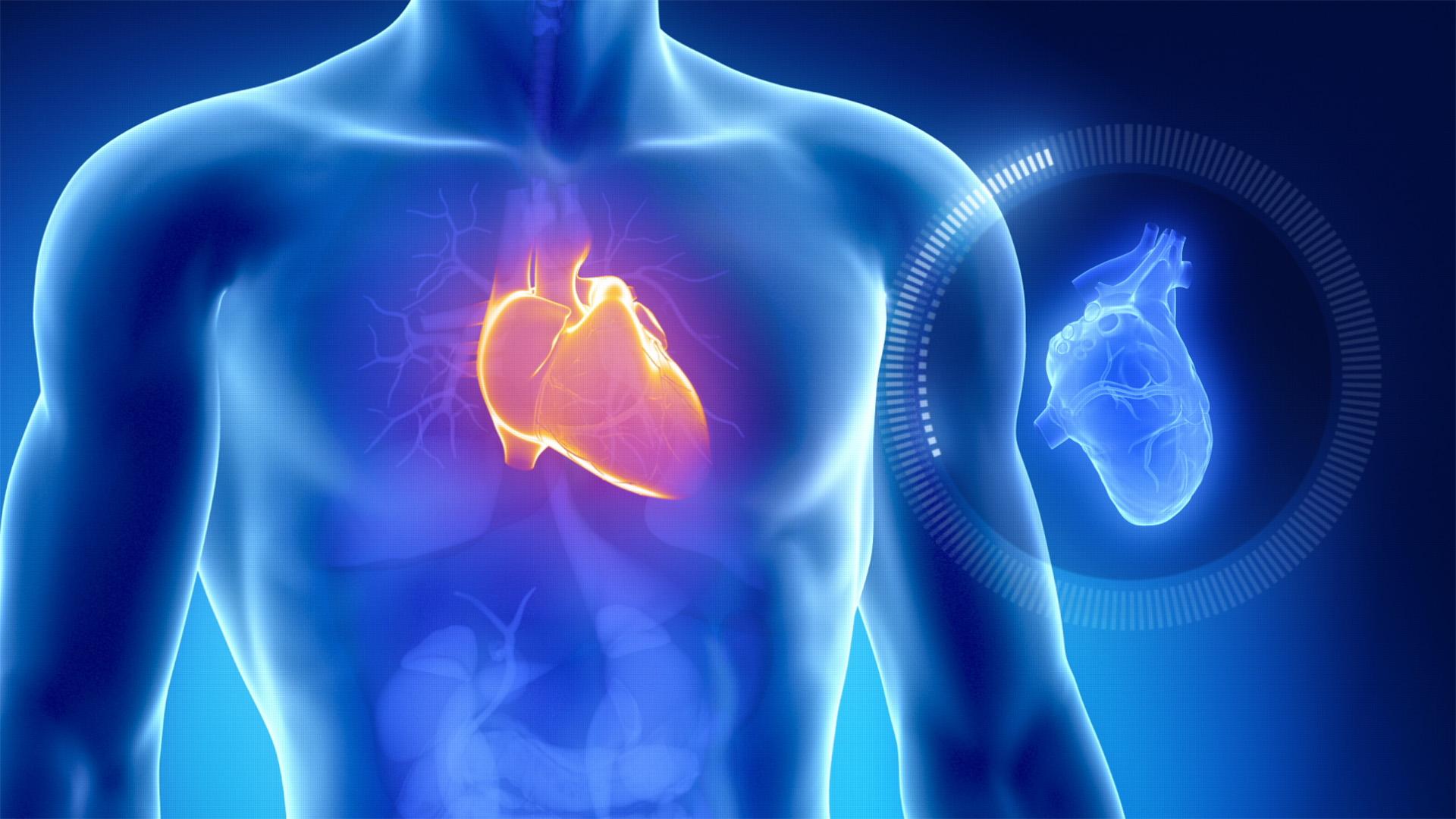 वायु प्रदूषणले बालबालिकामा उच्च रक्तचाप र मुटुको रोग बढाउछ  : अध्ययन